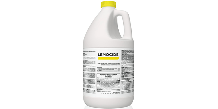 EcoClean Solutions Professional Mildew and Mold Killer